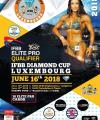 diamond cup luxembourg